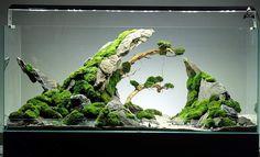 by Ancient Stone - aquascaping Aquarium Aquascape, Aquarium Setup, Aquarium Design, Planted Aquarium, Aquascaping, Aquarium Terrarium, Aquarium Landscape, Nature Aquarium, Home Aquarium