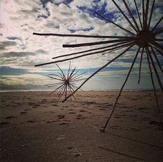 Laura Chatz (photo). 'Radial Symmetry' by Cha Davenport at Lookout Beach in Plettenberg Bay. I wonder at the simple and elegant symmetry and patterning of molecules, universal structures and everything in between.