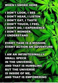 When I smoke herb...
