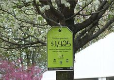 Data you'd discover if you could put a price tag on a #Tree. #TreeBenefits