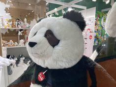 Teddy Bear, Toys, Outdoor Decor, Animals, Activity Toys, Animales, Animaux, Clearance Toys, Teddy Bears