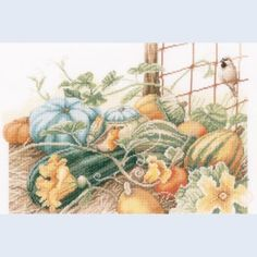 Pumpkins by Marjolein Bastin