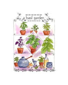 Sweet Basil Kitchen Herbs Watercolor Illustration by drawdaytoday, $15.00