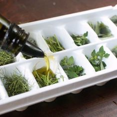 Amazing idea for preserving herbs that are about to go bad or save your favorite. Amazing idea for preserving herbs that are about to go bad or save your favorites from your garden to use all season! All you need is an ice cube tray. Freezing Fresh Herbs, Preserve Fresh Herbs, Freeze Herbs, Ice Cube Trays, Ice Cubes, Ice Tray, Food Trends, Canning Recipes, Side Dishes