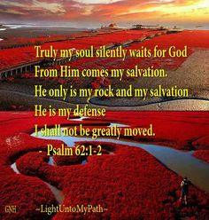 Psalms 62:1   Truly my soul waiteth upon GOD:   from HIM cometh my salvation.   HE only is my rock and my salvation;   HE is my defence;   I shall not be greatly moved.
