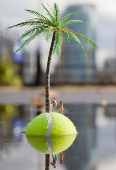 The Last Resort by Slinkachu, The little people project, Jan 2011 | The miniature street artist created this tiny island with palm tree out of a tennisbal. It even has mini human figures on it, as it floats around in the puddle. Click for more pictures.