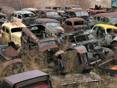 One man's collection of more than 600 vintage cars and trucks heads to auctio