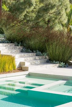 Love how this modern pool blends with the natural surrounding.
