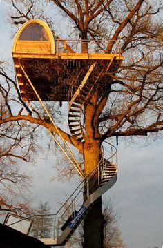 Baumraum | Baumhaus Solling | Unusual Dwellings | Pinterest | Haus ... Das Magische Baumhaus Von Baumraum