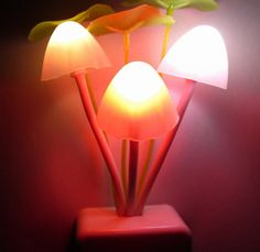 Super cute multi color changing night light. The darker the setting, the brighter these little mushrooms will go. The middle mushroom changes 7 colors while the two side mushrooms stay the same color.