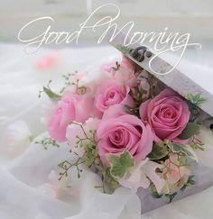 In today's post, we are presenting good morning msg. If you are searching for good morning msg you are welcome to our website. Good Morning Roses, Good Morning Msg, Good Morning Tuesday, Morning Morning, Good Morning Picture, Good Morning Messages, Morning Pictures, Good Morning Images, Morning Quotes