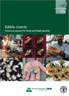 This publication describes the contribution of insects to food security and examines future prospects for raising insects at a commercial scale to improve food and feed production, diversify diets, and support livelihoods in both developing and developed countries.