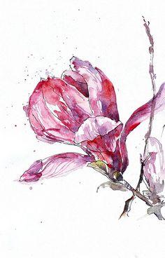 magnolia water colour