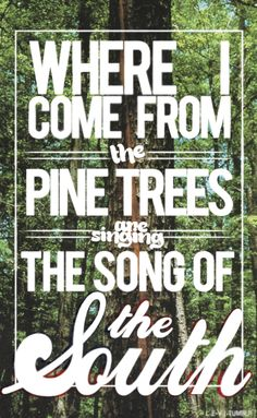 Where I Come From The Pine Trees Are Singing The Song Of The South ~ Alabama - Song Of The South ~ https://www.youtube.com/watch?v=lHdXQAQHjd8 ~ The South- Alabama, Arkansas, Florida, Georgia, Louisiana, Mississippi, North Carolina, South Carolina, Tennessee. Texas is so big that it is its own territory...