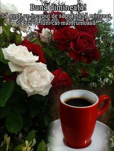Good Morning, Mugs, Tableware, Model, Beauty, Buen Dia, Dinnerware, Bonjour, Mug