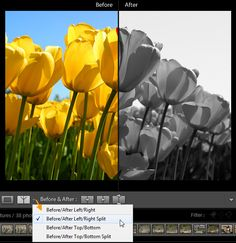 In today's tutorial we'll continue our in-depth introduction to Lightroom by looking at the techniques and options for development and processing. We'll be discussing cropping, color and exposure...