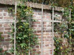 oude muur met latwerk