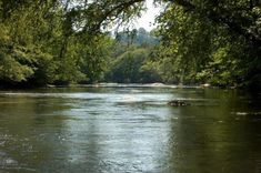 North Georgia Cabin Rentals near Blue Ridge, Georgia - Cuddle Up Cabin Rentals offer newly built, luxury mountain, lake and river cabin rentals Springs In Georgia, Georgia Cabin Rentals, Blue Ridge Georgia, Kayak Rentals, Down The River, River Walk, Blue Ridge Mountains, Staycation, Oh The Places You'll Go