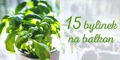 Parsley, Herbs, House Design, Vegetables, Garden, Balcony, Garten, Lawn And Garden, Herb