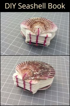 Give the old, boring scrapbook an upgrade with this seashell book. Diy Projects To Try, Craft Projects, Old Book Crafts, Nautical Christmas, Portrait Photography Poses, Beach Stuff, Seashell Crafts, Handmade Books, Nature Crafts