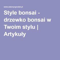 Style bonsai - drzewko bonsai w Twoim stylu | Artykuły