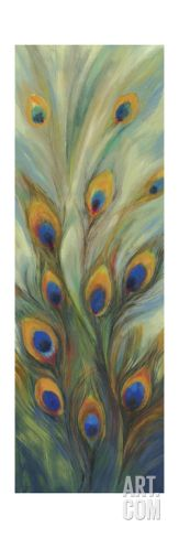 Peacock Tale Stretched Canvas Print by Sloane Addison  at Art.com