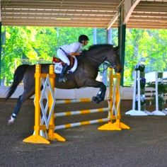 Wills Park Equestrian Center in Alpharetta, Ga - A city run equsterian facility at a lovely park!  Three playgrounds, chess/checkers tables/rec center/basketball/baseball/pool and spraypark