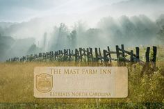Journal • www.mastfarminn-retreats.com/journal • The latest retreat & workshop articles and how-to's produced for our magazine-blog.