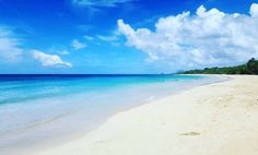 "Repost from Instagram ! #WeLike ! #Madinina by @mr_chabin_972 ""PLAGE DES SALINES  #martinique #madinina #ileauxfleurs #westindies #972 #islandboy #holidays #sun #caribbean #caribbeanworld #caribbeansea #chill #sea #igmartinique #ig_martinique #igdaily #ig_caribbean #ig_caribbean_sea #unlumitedcaribbean"" http://ift.tt/1XvCgjr"