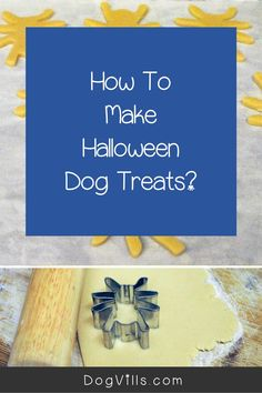 This October, celebrate your pup's most brilliant moves with these fun homemade Halloween dog treats shaped and decorated to look like vibrant spiders! Halloween Spider, Dog Halloween, Halloween Treats, Dog Treat Recipes, Dog Food Recipes, Purple Food Coloring, Halloween Cookie Cutters, Spider Cookies, Best Dog Food