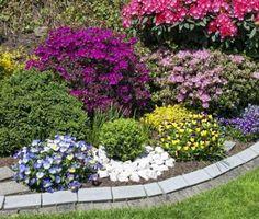 Многообразие ярких цветов на солнечной клумбе в саду