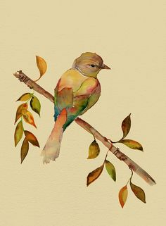 bird watercolor by colleen parker