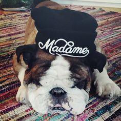 Madame le Store