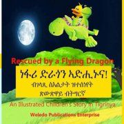 Rescued by a Flying Dragon - Kids Travel Books