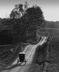 Horse-drawn carriage: Robert Weingarten spent four years photographing Amish communities in Indiana, Iowa, Ohio, Pennsylvania, Tennessee, an...