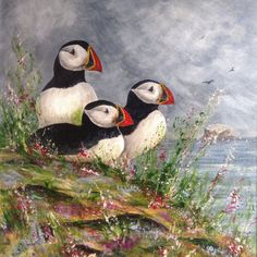Puffin Lookout is a card printed from an original painting, showing a family of puffins sitting in wildflowers looking out to sea. Size