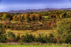 Catskills NY,love fall here