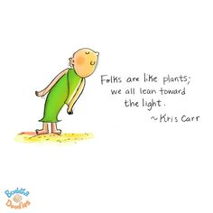 Folks are like plants; we all lean toward the light. ~ Kris Carr / art by @Mollycules - Buddha Doodle