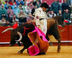 go to a traditional spanish bull fight