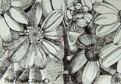 ACEO 2014 New Original Ink Drawing Art Miniature - Wild Flowers by Sue Flask