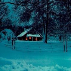 Winter Wonderland....... repinned by www.motherearthproducts.com