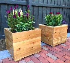 BloomBox Cedar Ground Planter