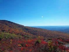 autumn colors near Grandfather Mountain
