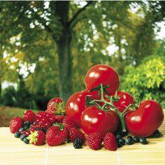 Appétissante composition de fruits rouges (tomates, framboises, fraises, groseilles...) Miam !