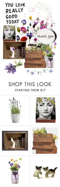 """Flora"" by annacullart ❤ liked on Polyvore featuring interior, interiors, interior design, home, home decor, interior decorating, Potting Shed Creations, Fornasetti, Modern Sprout and Fizz Creations"