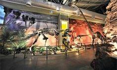 Macera trenleri, interaktif çocuk kitapları hatta Las Vegas'taki kumarhaneler için kollu makinalar... Universal Studios ve Warner Bros gibi ünlü markalar için tema parkları tasarlayan Amerikalı mimar Nicolas Koenig, 1984'ten beri bu sektörde tasarım yapıyor. Kendine 'eğlence mimari' diyen Koenig'in son eseriyse İstanbul'daki dinazor temalı park Jurassic Land