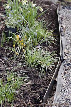 Trädgårdsflow: Sheet metal edges for flower beds