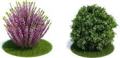 2d-3d-object-library-furniture-plants-people-vehicles-63697-5215981.jpg (676×330)
