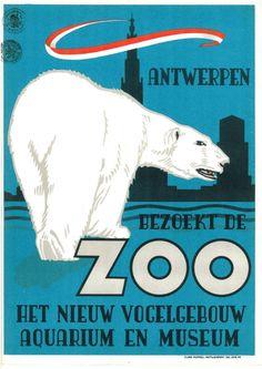 Affiche ZOO Antwerpen ijsbeer