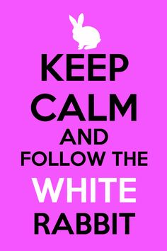 Keep calm and follow the white rabbit!
